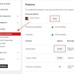 Monetization in YouTube