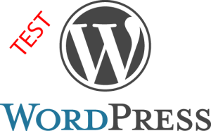 How To Test WordPress Install On Dedicated IP Without Pointing Domain
