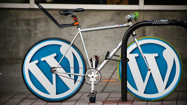 My Top 5 WordPress Plugins to Improve Load Times